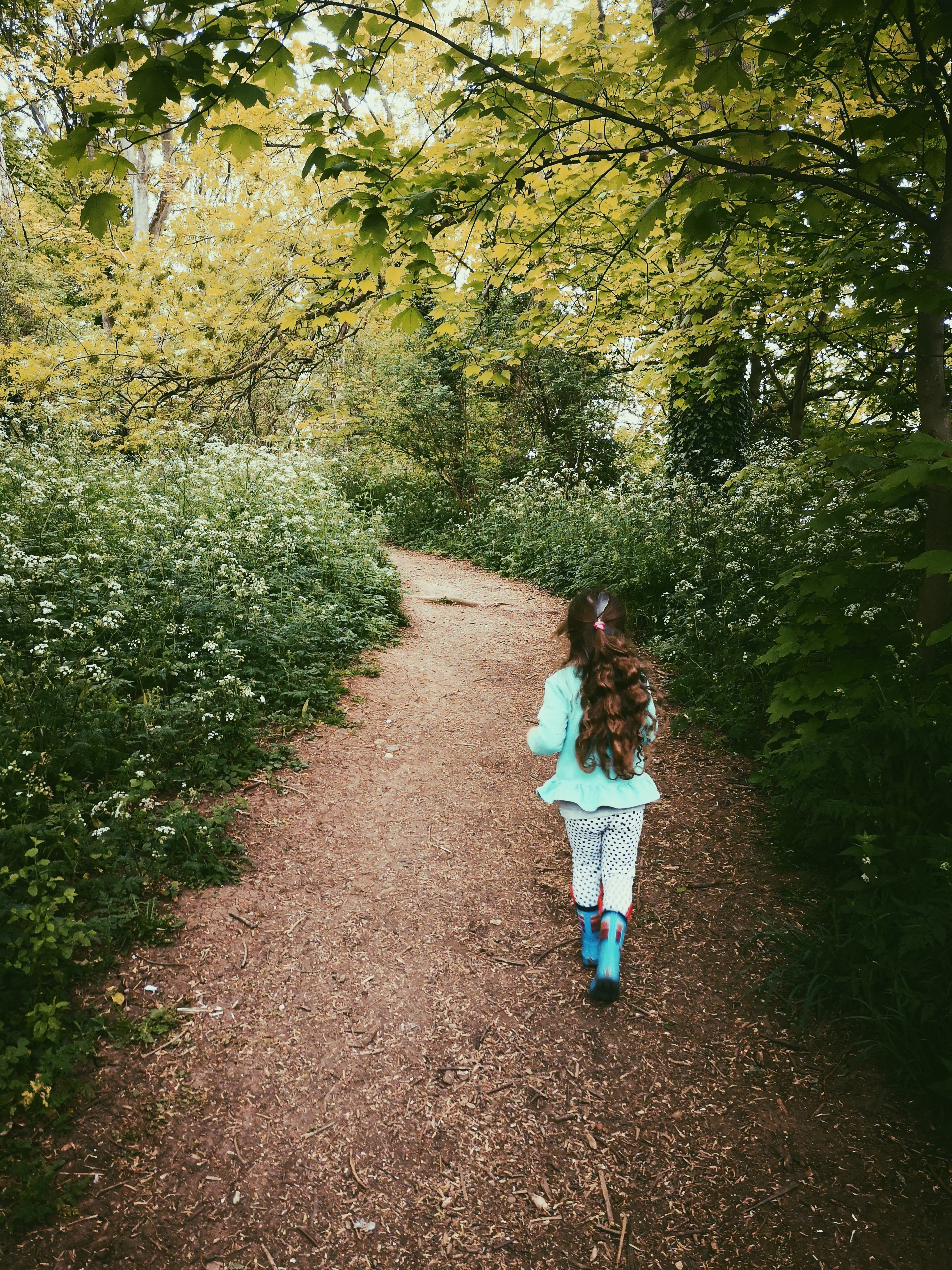A picture of a young girl walking through English woodland