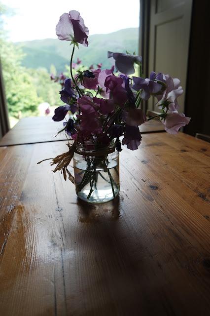 pink flowers in jam jar