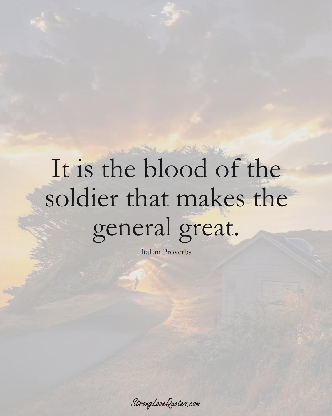 It is the blood of the soldier that makes the general great. (Italian Sayings);  #EuropeanSayings