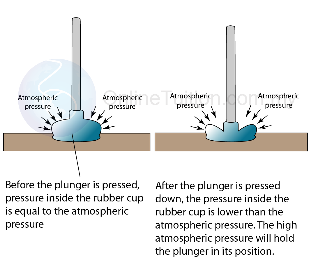Force And Pressure  Ph...