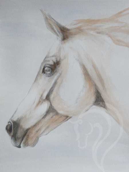 abstract contemporary equestrian art, equine art, horse drawing