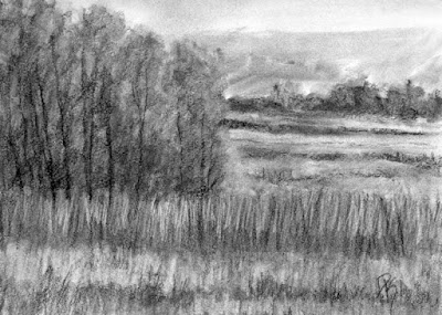 charcoal sketch landscape wetland nature