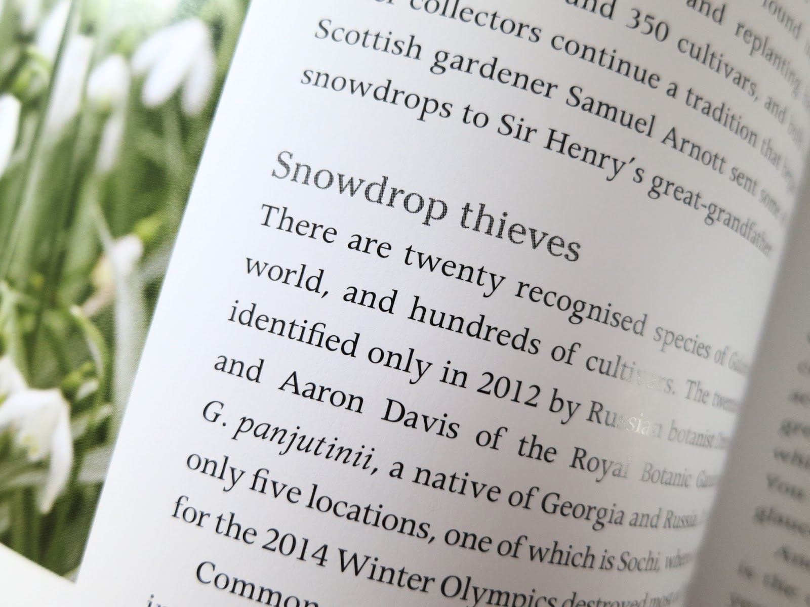 Loose and Leafy photo of text about Snowdrop Thieves. p.48 of Secret Gardens of the Cotswolds