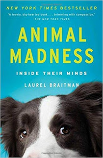 Animal Book  Club May 2019: Animal Madness, cover shown