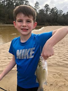 Chris Morton, White Bass, Fly Fishing for White Bass, White Bass in Texas, Texas Freshwater Fly Fishing, Fly Fishing in Texas, Texas Fly Fishing, TFFF, White Bass Fishing