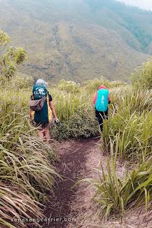 Daftar Online Gunung Pundak Via Tahura
