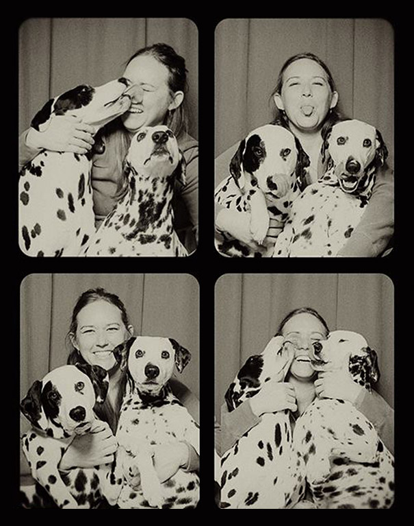 These Dogs In The Photo Booth Are The Sweetest Thing You've Ever Seen