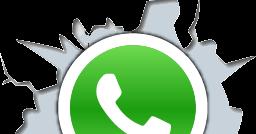 Программа для рассылки по whatsapp