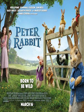 Peter Rabbit 2018 Dual Audio ORG Hindi 720p BluRay 900MB DD5.1Ch ESubs poster