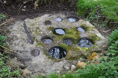 Nine-hole Stone, Offaly Bullaun Stone.