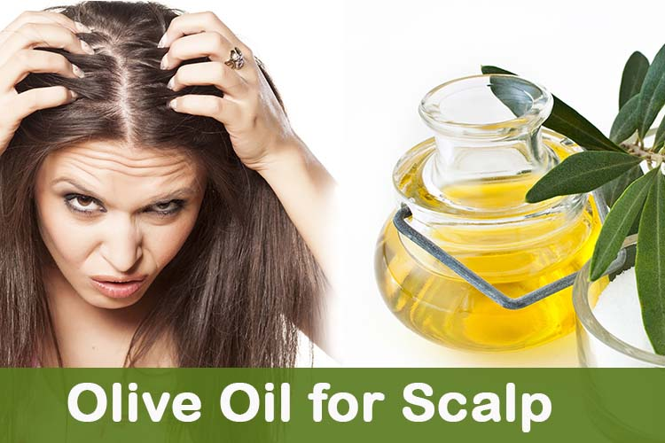 Mellow dry hair: Apply an olive oil cover |The Girls Beauty Bible