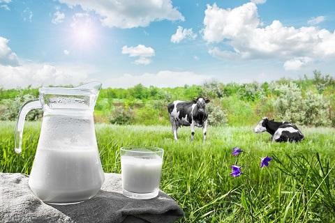 Susu Organik Alami untuk Anak