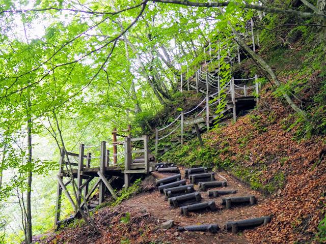 西沢渓谷 階段