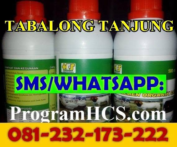 Jual SOC HCS Tabalong Tanjung