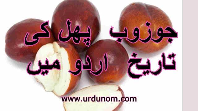 جوزوب  پھل کی تاریخ  اردو میں | History of Jujube fruit in Urdu