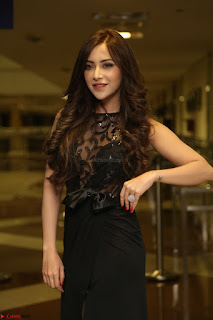 Angela Krislinzki in Transparent Black Gown at Rogue Movie Teaser Launch 1st March 2017 032.JPG