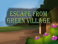 Top10NewGames - Top10 Escape From Green Village