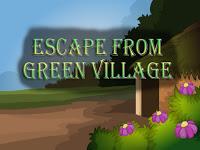 Top10NewGames - Top10 Escape From Green Village
