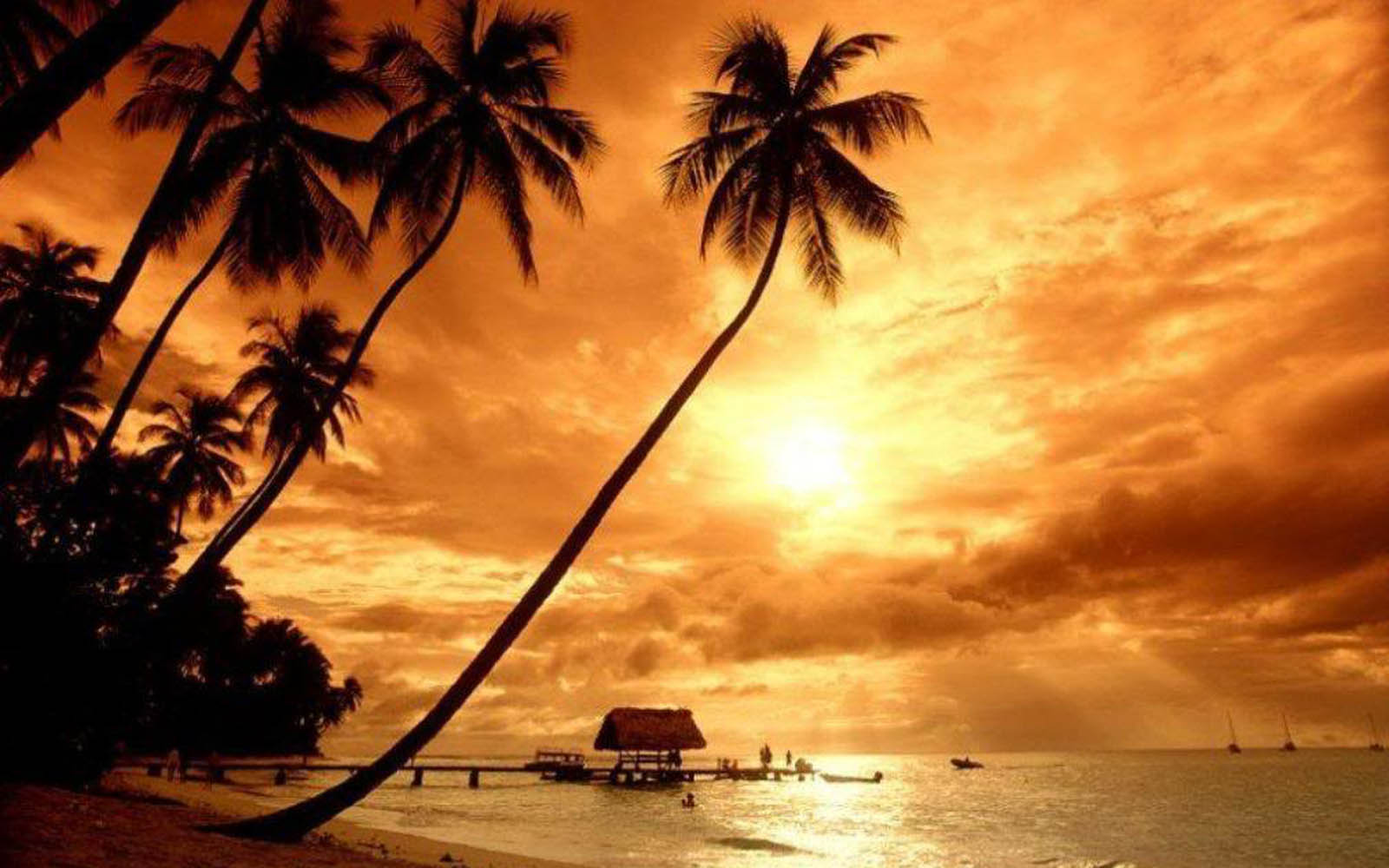 Wallpapers: Evening Wallpapers