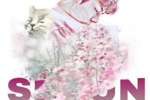 Kitten by SparklingDeer Pdf
