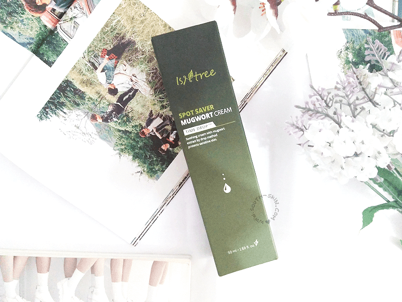 review-isntree-spot-saver-mugwort-cream-southskin