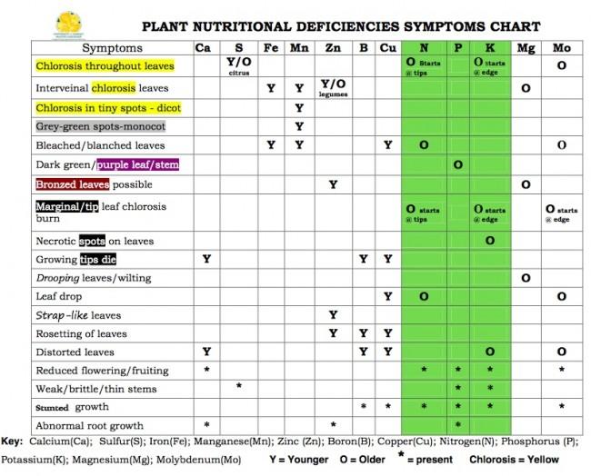 Plant Nutritional Deficiencies Symptoms Chart