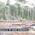 Terreno desmatado equivalente a 7 hectares é encontrado em área de proteção ambiental em Ibicoara na Chapada Diamantina