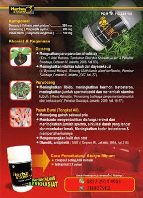 herbal-penambah-vitalitas-pria-makanan-penambah-vitalitas-pria