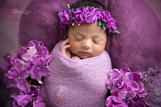 newborn baby girl between purple flowers