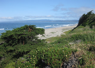 Coastal view of Monterey Bay toward Santa Cruz from La Selva, California