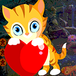 Games4King Lovely Feline …