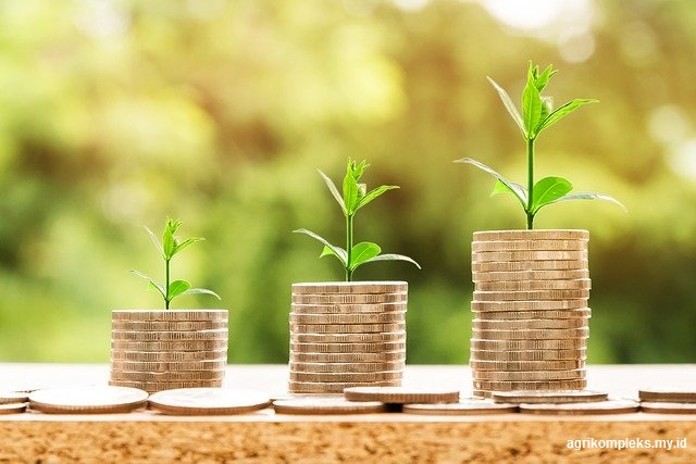 Alasan terpenting untuk meningkatkan sumberdaya keuangan agribisnis adalah untuk memperbe Alasan Untuk Meningkatkan Sumber Daya keuangan
