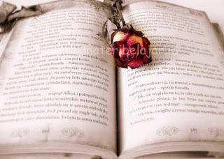 Membandingkan Teks Cerpen Dengan Teks Novel, Legenda Dan Fabel