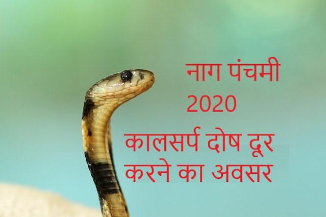 Naag Panchami 2020-  कालसर्प दोष दूर करने का अवसर