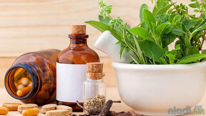 daftar obat asam urat alami dari tumbuhan