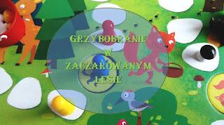 http://mamadoszescianu.blogspot.com/2016/06/granna-grzybobranie-w-zaczarowanym-lesie.html
