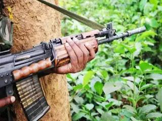 terorist-release-vedio-baramul