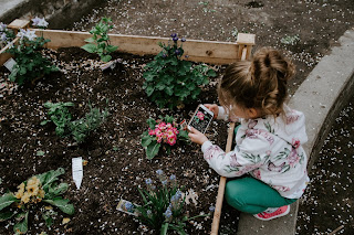 A little girl squatting by a a raised garden bed. Photo by Kelly Sikkema on Unsplash.