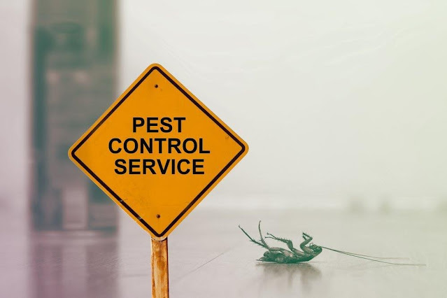 Contact Pest Control Services