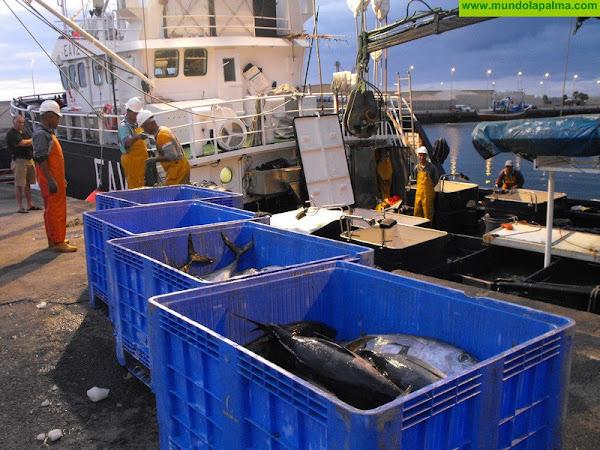 Acceso a las aguas canarias de pesqueros sin base en las islas