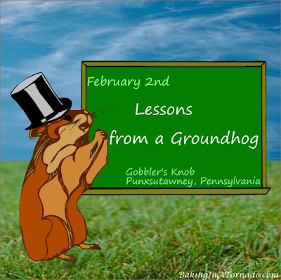 Lessons from a Groundhog | Graphic created by and property of www.BakingInATornado.com | #MyGraphics