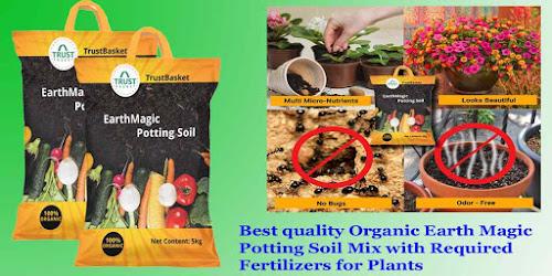 Best garden soil to buy