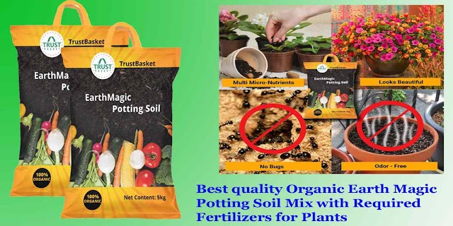 Best garden soil to buy | Best potting soil for indoor plants India