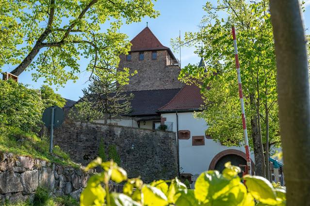 Premiumwanderweg Murgleiter | Etappe 2 von Gernsbach nach Forbach | Wandern nördlicher Schwarzwald 11
