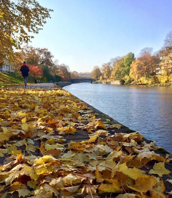 Aura joki syksyllä