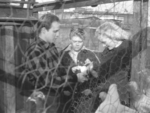 on the waterfront shows the dockworkers On the waterfront shows some of the methods employed by corrupt unions to extort money from union members for example, in the film, workers were.