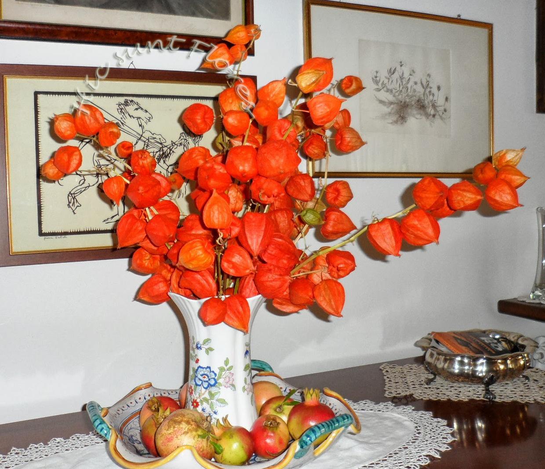 Come Seccare Le Piante belli da seccare, da far decorazioni quando viene natale.