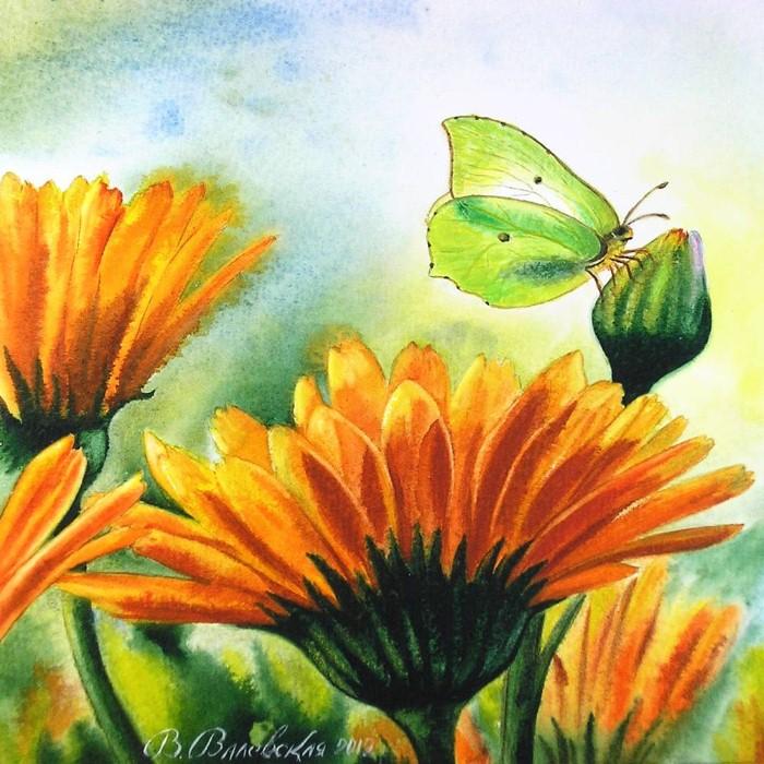 Акварельные рисунки цветов. Валентина Валевская 7