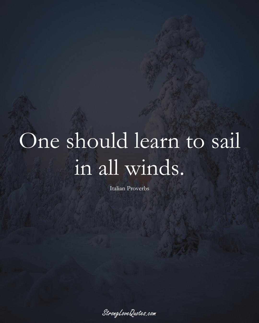 One should learn to sail in all winds. (Italian Sayings);  #EuropeanSayings