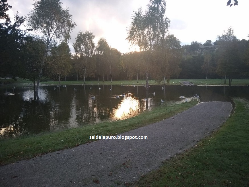 parque-fluvial-otoño